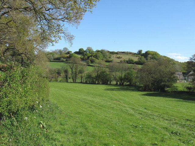 Lush green Welsh landscape © Derek Voller cc-by-sa/2.0 ...