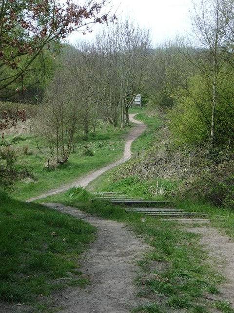 rough wood country park  u00a9 michael westley    geograph
