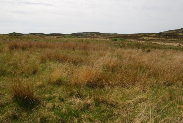 Moorland SW of L. Assapol, Mull
