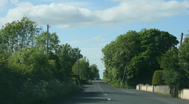 The R371, County Roscommon (2)