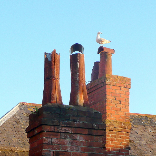 Weymouth Chimney Pots