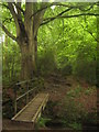 TQ5441 : Wealdway footbridge in Avery Wood by David Anstiss