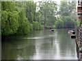 TL4459 : Punting in the rain : Week 23