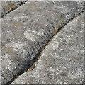NR8393 : Ogham inscription at Dunadd by David Hawgood