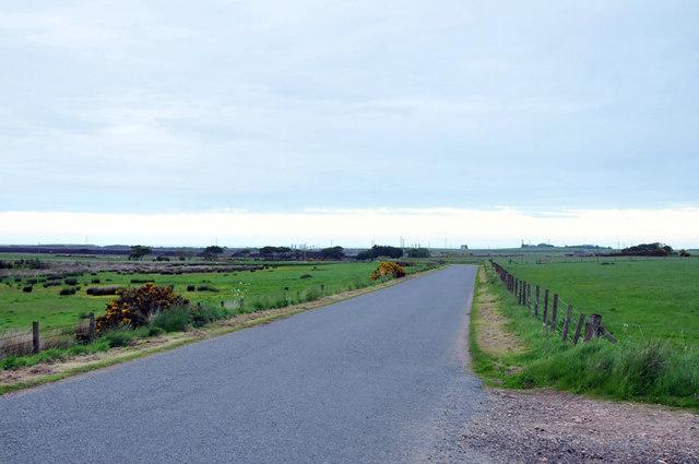 Road near St Fergus Moss