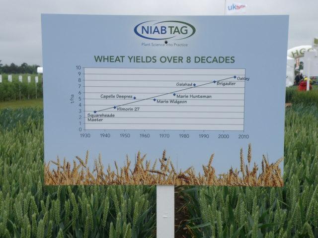 NIAB display board, Cereals 2010