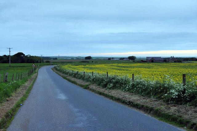 Minor road near Crimond at dusk