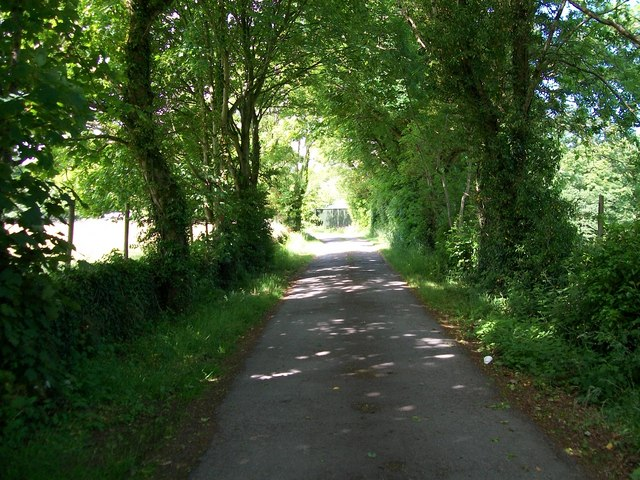The lower end of the drive to Trefan Hall