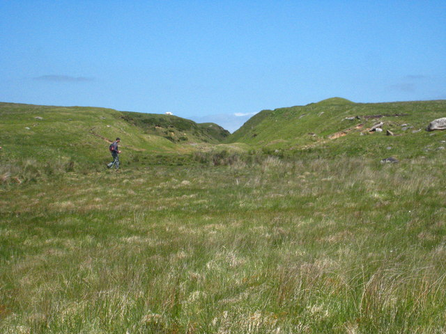 Marshy ground east of High Moor