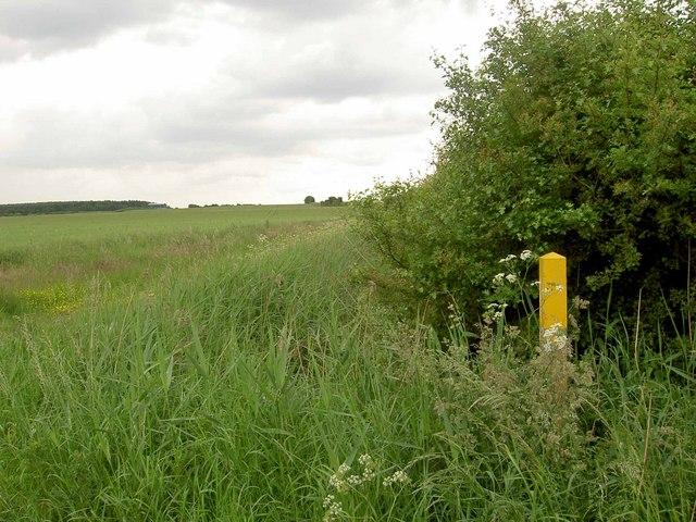 Footpath marker on the path to Sutton cum Lound
