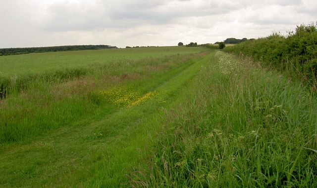 The path to Sutton cum Lound
