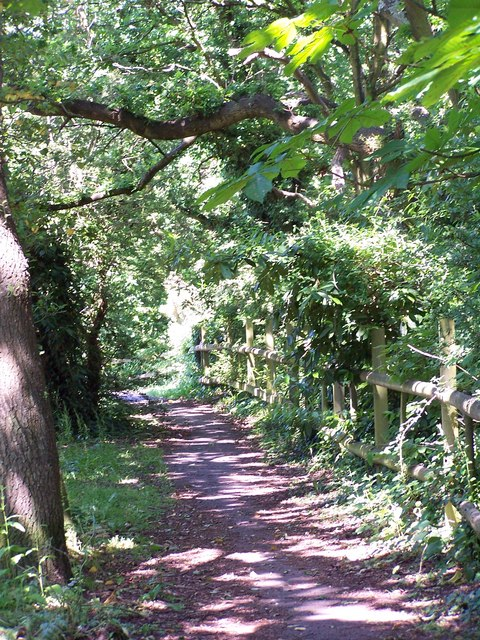 Path beside stream at Testwood