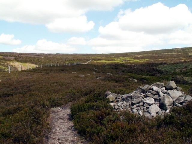 Footpath to Ormes Moor