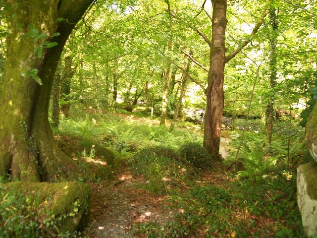 Footpath along the sylvan banks of Afon Dwyfor