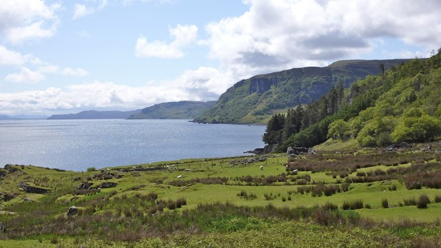 East coast of Raasay with cliffs below Raasay forest