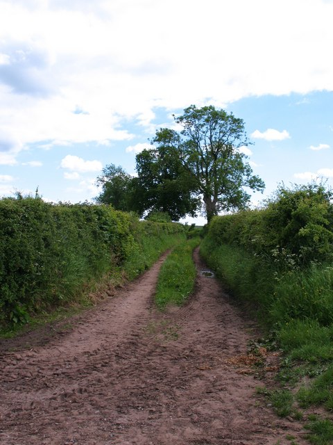 Bridleway at Bagby