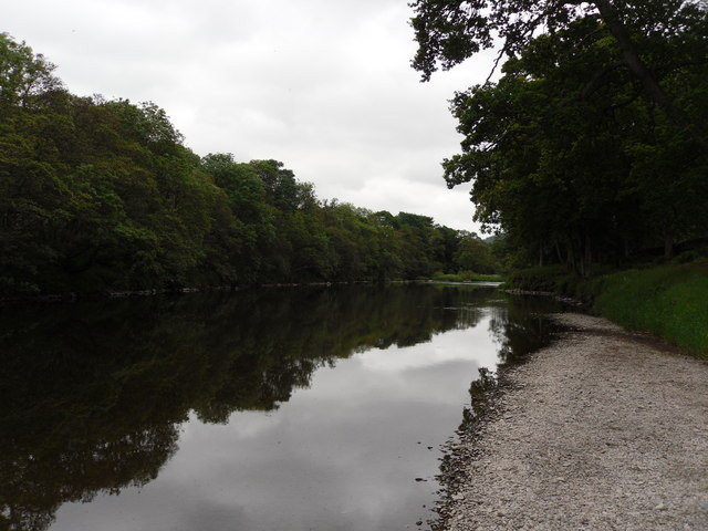 The River Tweed from Rampy Haugh Wood