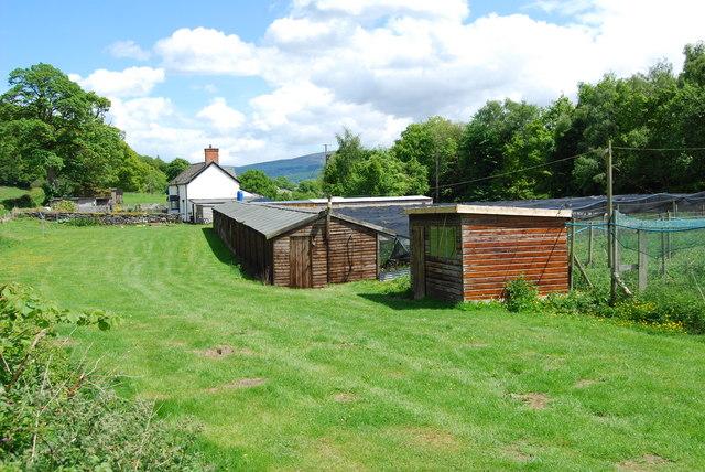 Game bird rearing sheds