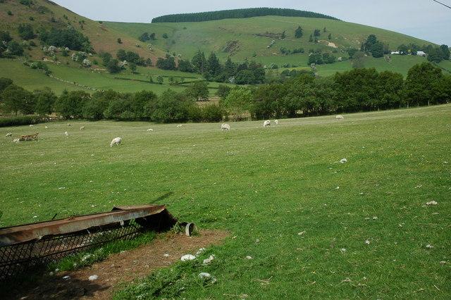 Farmland beside Nant Tawelan