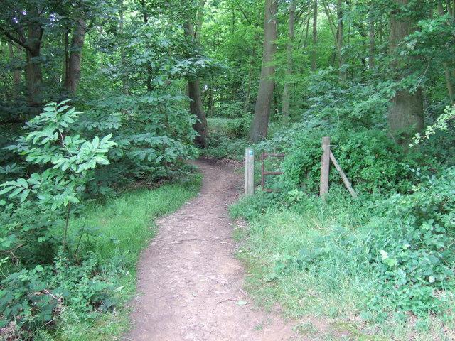 Footpath near Lodge Hill Farm