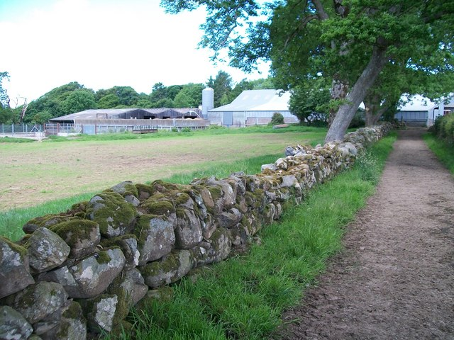 Modern Farm Buildings at Trefan
