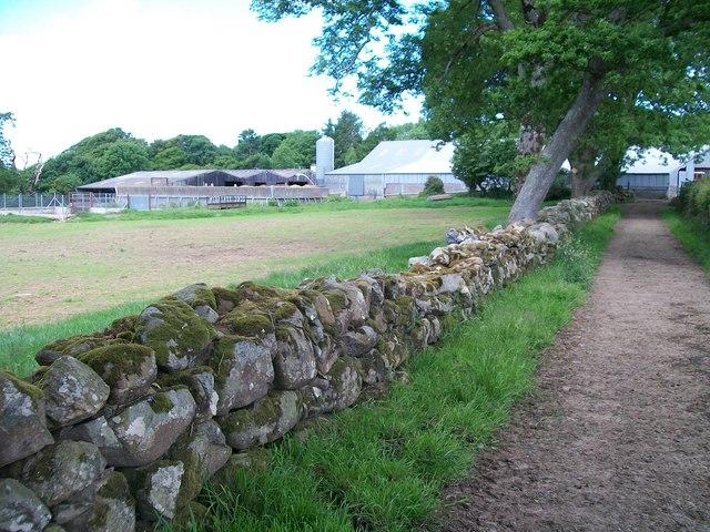 Modern Farm Buildings at Trefan