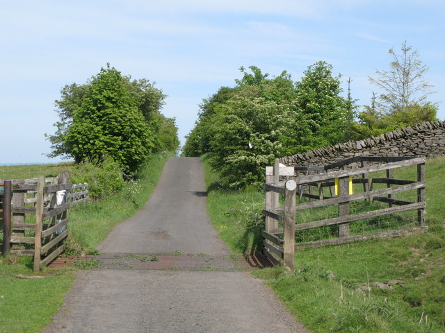 Cattle grid east of Penpeugh