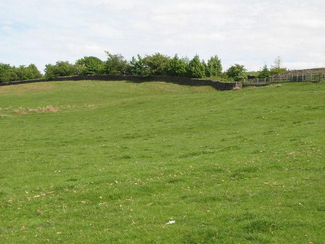 Pastures east of Penpeugh (2)