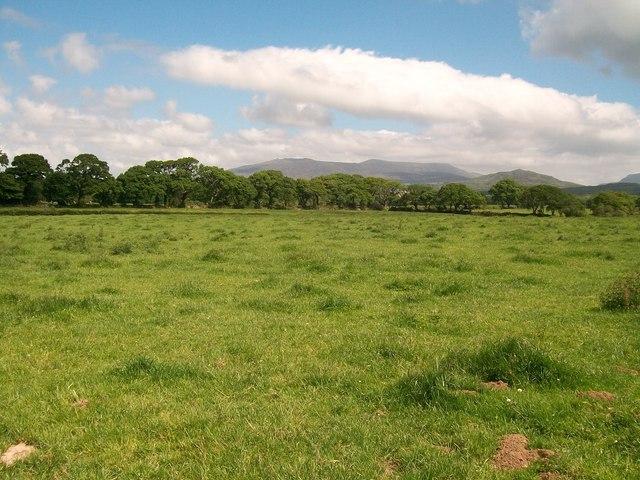 View eastwards across grazing land