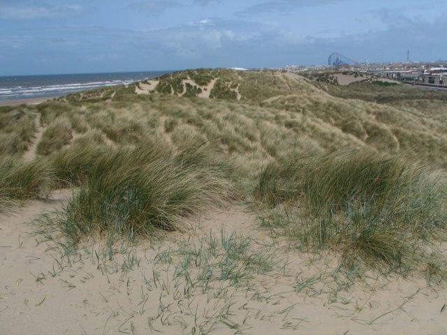 St. Annes Dunes