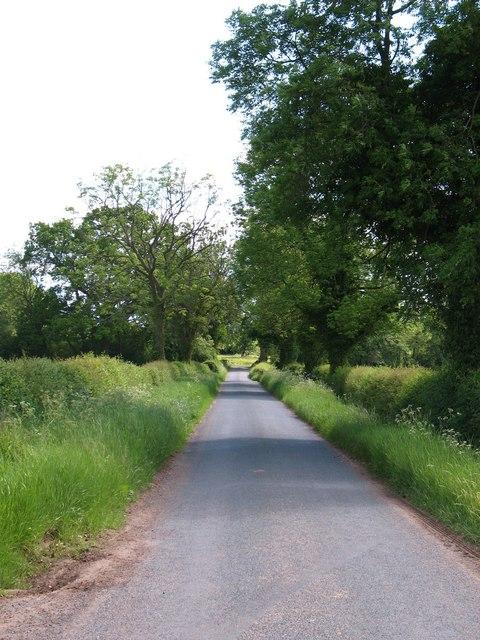 Lane to South Kilvington
