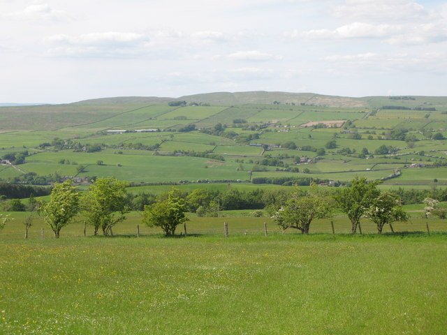 Pastures and woodland east of Allensgreen (4)