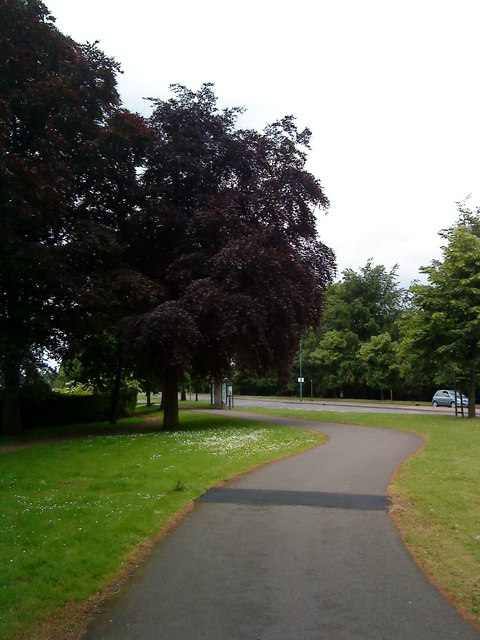 Cycle path on University Boulevard