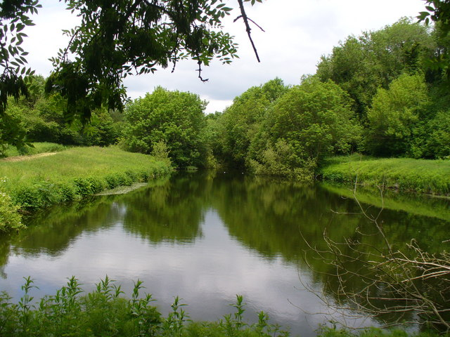 Fish Pond, Binsted