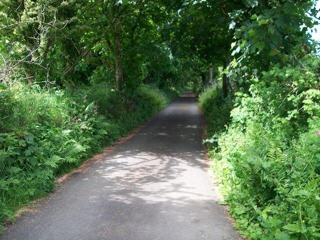 Driveway from Cefn-y-maen