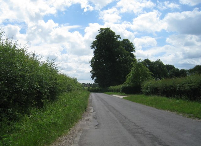 Hampshire country lane