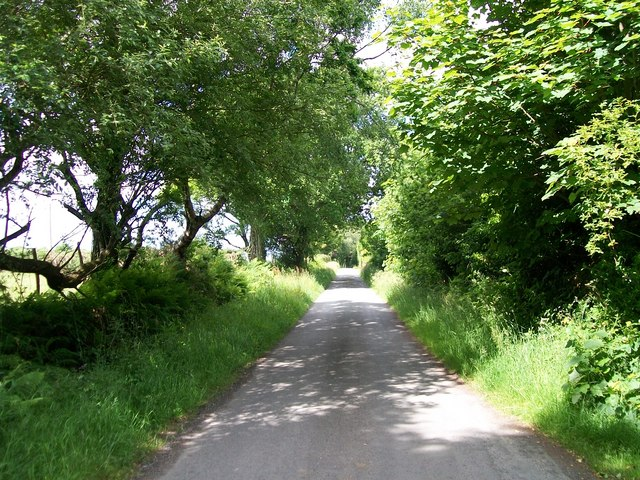 The road west towards Llanystumdwy