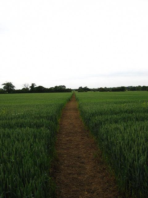 Footpath near Laurel Farm