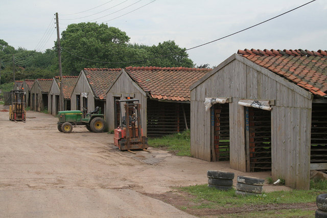 Hoe Hill works, drying sheds
