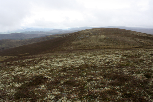 SW slopes of Geal-charn Mor