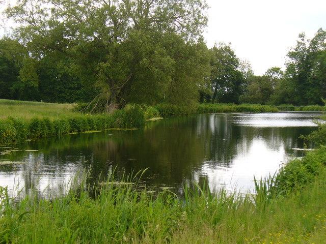 Pond near Wyck
