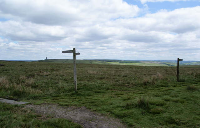 Footpath signs on Langfield Common