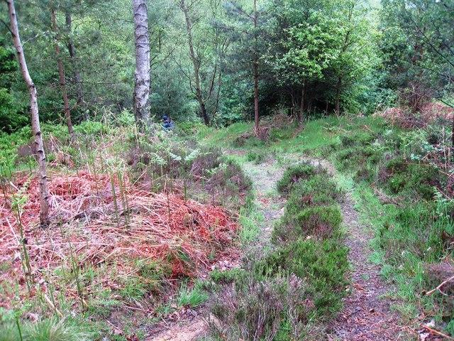 Footpath to Mitchell Hagg Wath