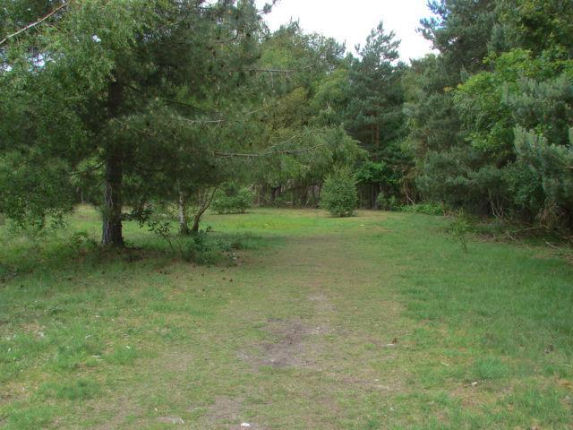 Dawney Hill