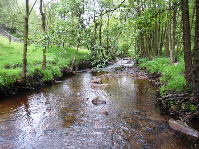 Hodge Beck - looking downstream