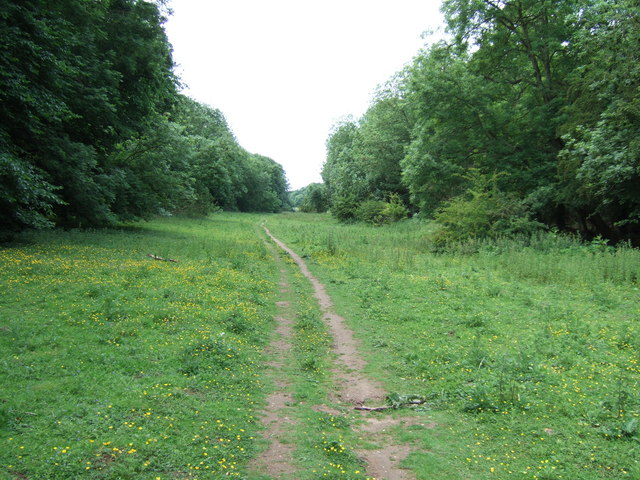 A path in Ringstead Downs