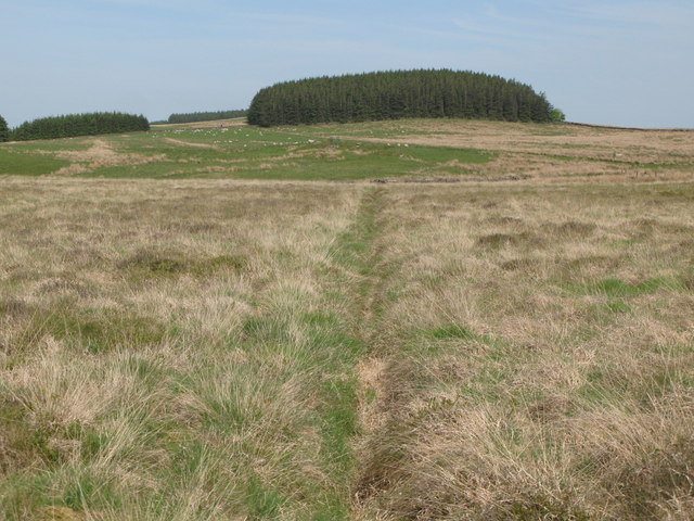 Drainage channel on Curricks Rigg