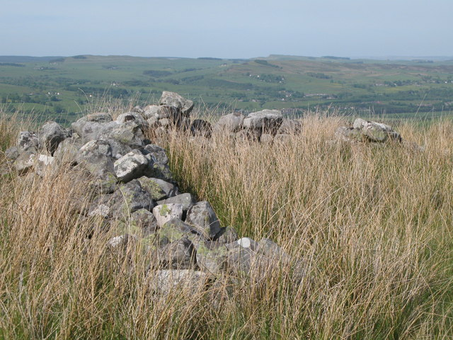 Ruin on Curricks Rigg