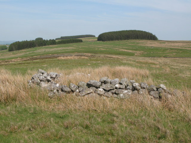 Ruin on Curricks Rigg (2)