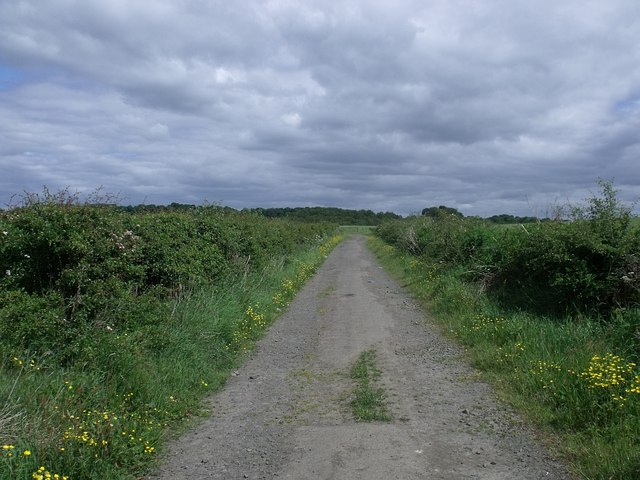 The road to St. Flannans